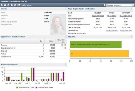 Everwin CXM, un CRM dédié aux sociétés de services - Actionco.fr | Customer Experience Management (CXM) | Scoop.it