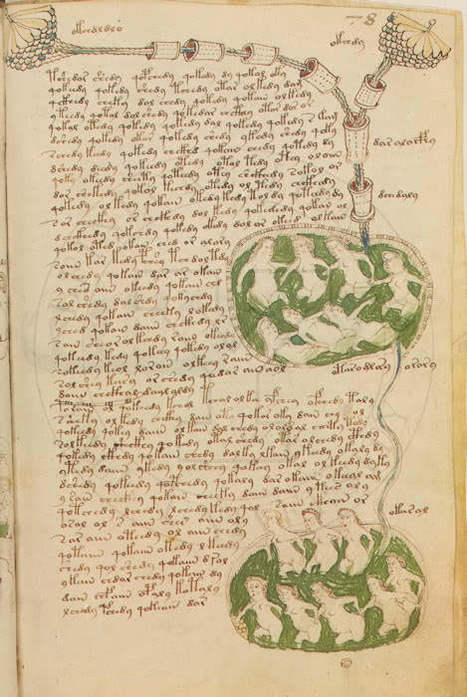 Le manuscrit Voynich | Merveilles - Marvels | Scoop.it