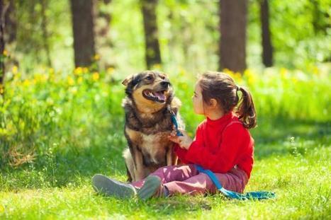Children with pets have less stress | Opvoeden tot geluk | Scoop.it
