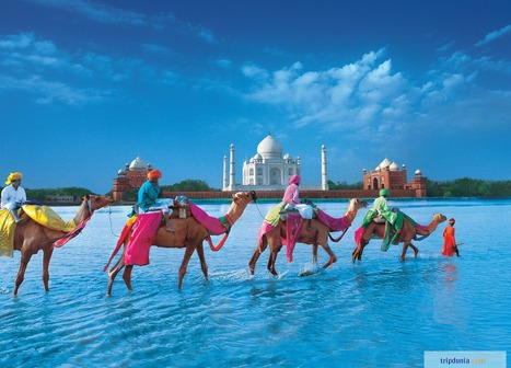 New India Travel Booking Website | Travel Tips, Sight Seeing,  Hotels & Transportation | Scoop.it