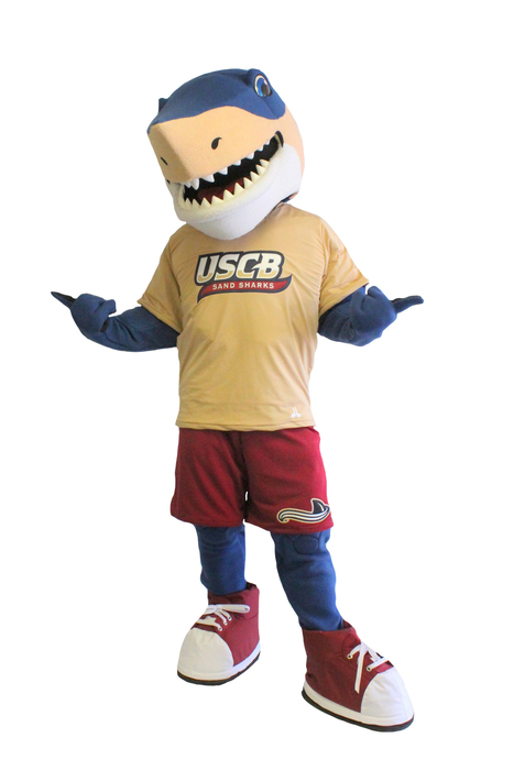 Street Characters Inc. Mascot of the Month for February is Finnegan!  | Mascots | Scoop.it