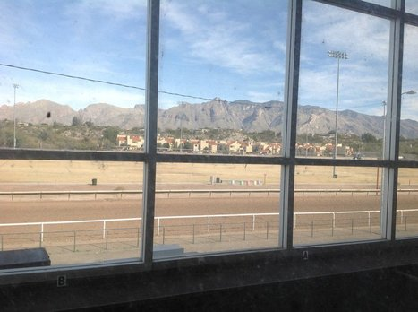 Horse racing may be preserved at Rillito Park Race Track   CALS in the News   Scoop.it