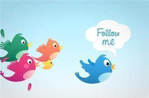 Twitter affiche une croissance non rentable au 1er trimestre | Ma veille sur internet | Scoop.it