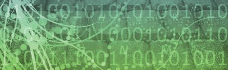 « Big buzz » : le sens caché du Big Data | Le blog de la formation informatique | Contrôle de gestion & Système d'Information | Scoop.it