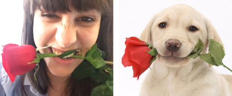 Hilarious Twitter Account Matches People with Their Doppelgänger Dogs | Le It e Amo ✪ | Scoop.it