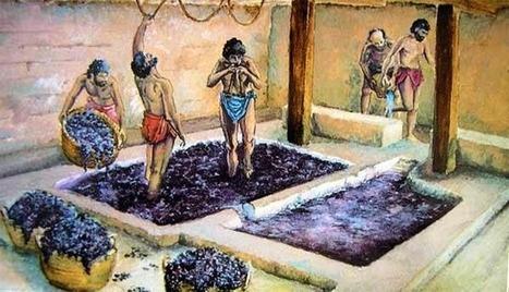 Guía de los vinos de la Antigüedad  | LVDVS CHIRONIS 3.0 | Scoop.it