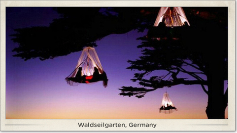 Tree camping in Germany | Glamping | Scoop.it