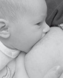 Actu santé : ALLAITEMENT maternel: Parce que le lait de la mère contient plus de 700 bactéries! | Nos amies les bactéries | Scoop.it