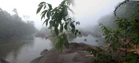 Guyane Tourisme   Le Tourisme en Guyane   Scoop.it