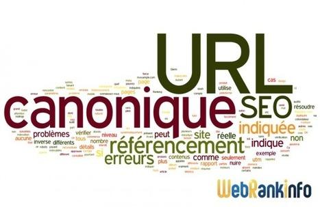 Les 12 + grosses erreurs sur l'URL canonique | Technologies & web - Trouvez votre formation sur www.nextformation.com | Scoop.it