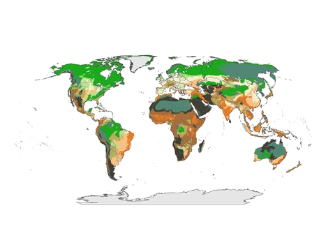 Vulnerability to climate change | Climate and Vegetation | Scoop.it