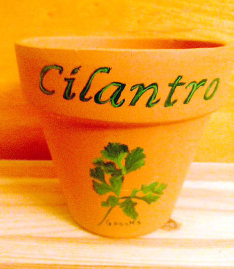 Cilantro Herb Pot 4.5 Inch Red Clay Terracotta Hand Painted Cilantro Plant Made to Order | Antiques n' Oldies | Scoop.it