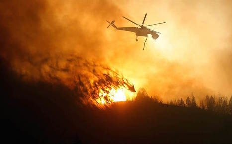 XMRE  » Blog Archive  How to Minimize Wildfire Risks: Steps to Deal with Wildfire Properly - XMRE   Linda Gross   Scoop.it