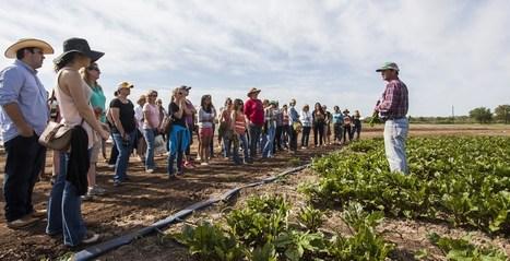 More about smart farming - Craftsmanship Magazine | Organic Farming | Scoop.it