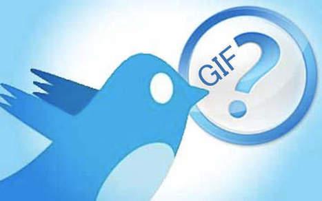 Twitter supporte désormais les GIF animés - Linformatique.org | RESEAUX SOCIAUX | Scoop.it