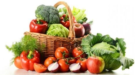 Top fat burning vegetarian foods rich