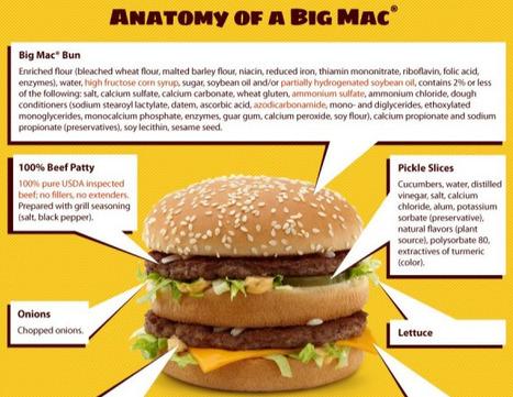 A world of burger ★ Veilleurs.info via @sirchamallow | infographies | Scoop.it