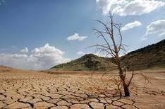 CAMBIO CLIMÁTICO Y SEGURIDAD ALIMENTARIA (Riesgos de la sequía) | Nuevos modelos alimentarios y agropecuarios | Scoop.it