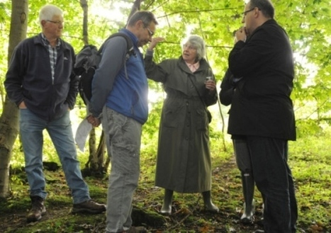 MoD digs for funds to save historic Dreghorn trenches - Latest news - Scotsman.com | Archaeology News | Scoop.it