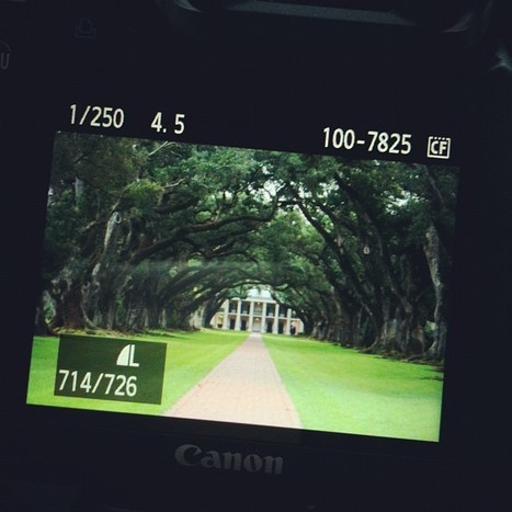 Can't wait to see this on my computer! | Oak Alley Plantation: Things to see! | Scoop.it