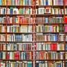 Gender and Literature