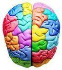 Test de inteligencias múltiples para ser más creativos | Las Inteligencias Multiples | Scoop.it