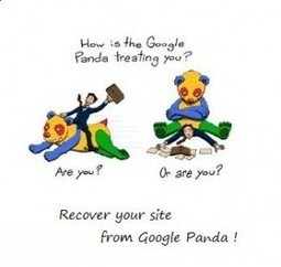 Everything About Google Panda: Recovery from Google Panda | Falcon- Web solutions | Falcon WebSolutions | Scoop.it