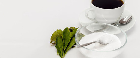 7 Things You Didn't Know About Stevia | nutrition | Scoop.it