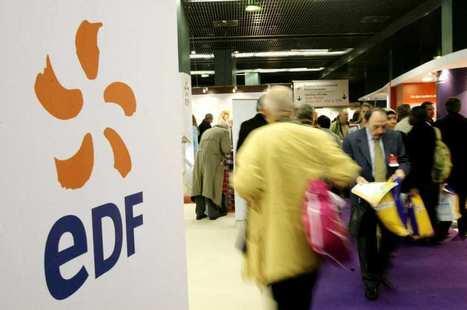 Le Conseil d'Etat pourrait forcer les clients d'EDF à payer plus cher | Utilities business & knowledge | Scoop.it