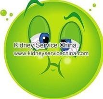 What Causes Nausea And Vomiting During Dialysis | kidneyservicechina | Scoop.it