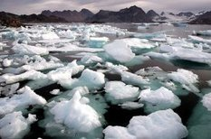 The Baffling Response to Arctic Climate Change | Wild Resiliency | Scoop.it