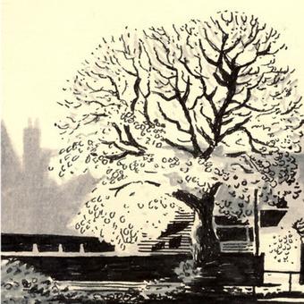 Jon McNaught   Illustration, Art, Creative   Scoop.it