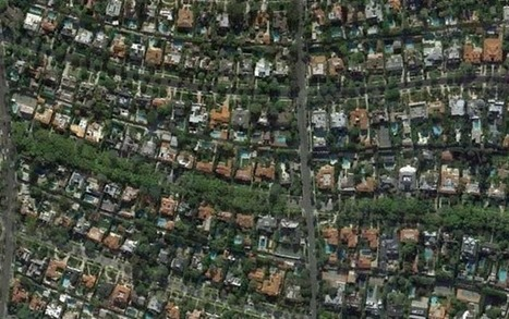 How Can You Measure Income Inequality? Count The Trees - COLORLINES | Arrival Cities | Scoop.it