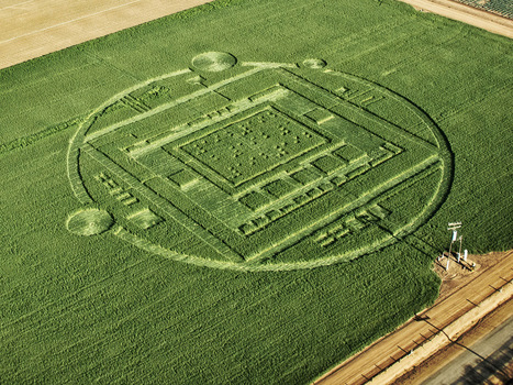 Nvidia crop circle marketing stunt gets attention | Marketing in Motion | Scoop.it