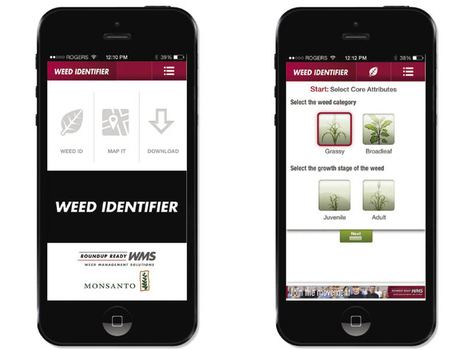 Monsanto weed  ID app | Ag app | Scoop.it