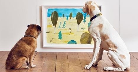 Une exposition d'art contemporain entièrement dédiée… aux chiens ! | PHOTOGRAPHIE | Scoop.it