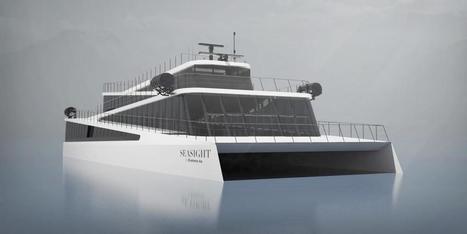Vision of the Fjords : Un nouveau ferry pour le tourisme nature | French speaking media | Scoop.it