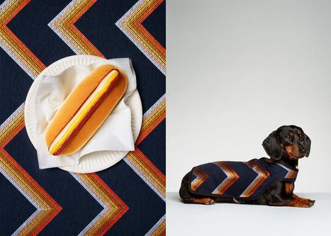 Hot Dogs by Jess Bonham   Photography News Journal   Scoop.it