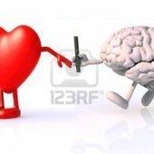 ¿Dónde se encuentra el amor?, en el corazón o cerebro - RCN Radio | Ingeniería Biomédica | Scoop.it
