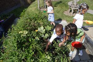 School Spotlight: Landscape for Learning – Buffalo School 90 Courtyard Transformed | School Gardening Resources | Scoop.it