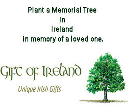 Irish victims of Slavery - History of Irish Slaves | Community Village World History | Scoop.it