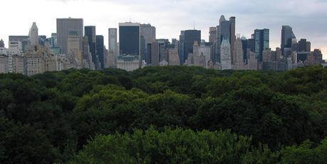 La ville, clé de la survie de la planète | city in movement | Scoop.it