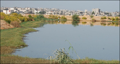 BBC NEWS | Middle East | Gaza thirsts as sewage crisis mounts | IB Part 2: Freshwater - issues and conflicts | Scoop.it