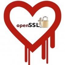 Des hackers préparent des attaques exploitant la faille OpenSSL Heartbleed | Libertés Numériques | Scoop.it