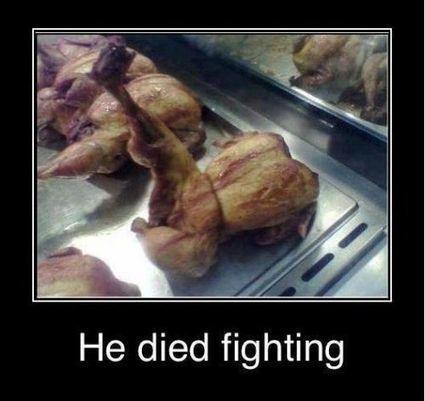 Died Fighting | FanPhobia - Celebrities Database | Funny | Scoop.it