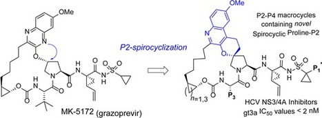 Design and Synthesis of P2–P4 Macrocycles Containing a Unique Spirocyclic Proline: A New Class of HCV NS3/4A Inhibitors - ACS Medicinal Chemistry Letters (ACS Publications) | Hepatitis C New Drugs Review | Scoop.it