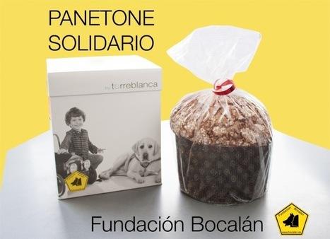 Panettone Solidario de Paco Torreblanca | Personas y Animales | Scoop.it