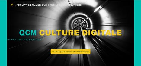QCm. Culture numérique. Culture digitale. Histoire de l'Internet et du web | culture Web 2.0 | Scoop.it