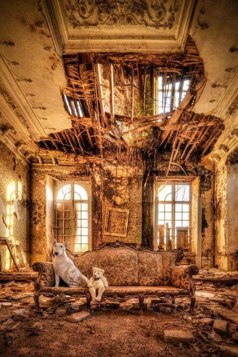 Urbex Dog – Une photographe explore les lieux abandonnés avec son chien | Exploration Urbaine | Scoop.it