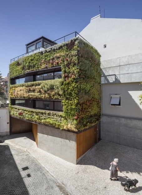 "This Lisbon Home Has A Green Facade That ""Breathes"" 